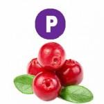 Витамин P (Рутин)