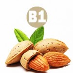 B1 (Тиамин) Свойства витамина, характеристики и воздействие на организм