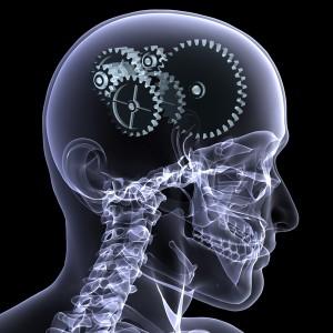 Как улучшить способности нашей памяти