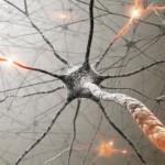 Какие витамины помогут восстановить и укрепить нервную систему?