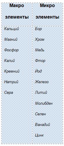 tablica micro i macro elementov