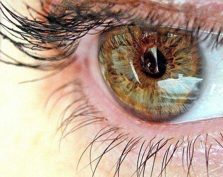 Какими витаминами можно поддержать зрение