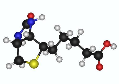 Биотин - 3х мерное изображение структурной формулы