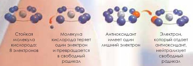 Антиоксидантные свойства витамина А
