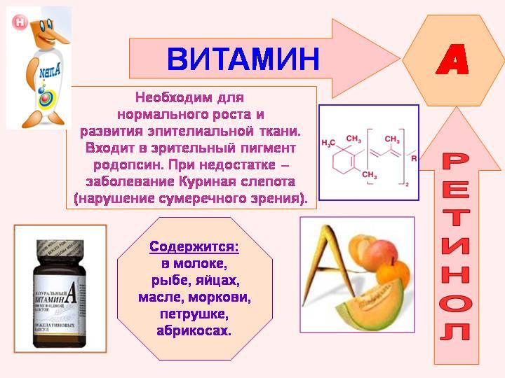 В чем содержится витамин А (ретинол)