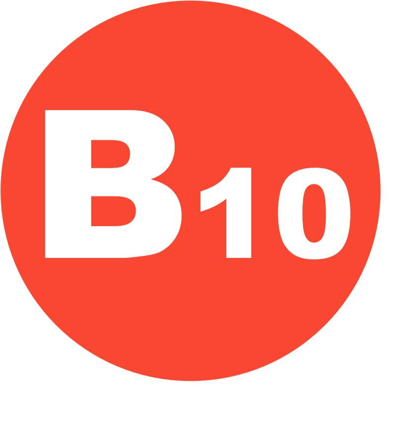 Суточная норма B10