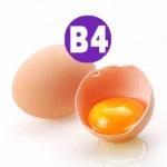 B4 (Холин) Воздействие на организм, суточная потребность.