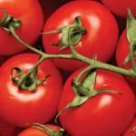 Полезные свойства сочных красных плодов