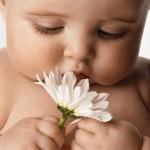 В каких витаминах нуждается младенец?