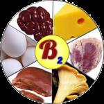 Рибофлавин (B2) и его содержание в продуктах питания